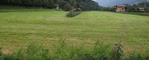 Défendre la zone humide de Sallanches, c'est protéger les territoires en aval et la biodiversité !