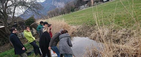Bilan de la lutte en faveur de la zone humide de Sallanches.